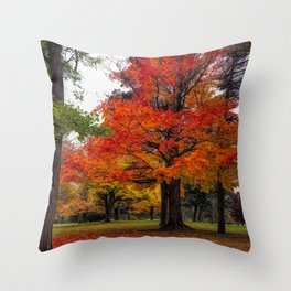 Vibrant Colors  by Michelle Anderson Throw Pillow