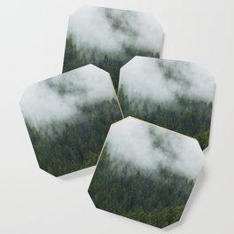 Tree Fog Coaster