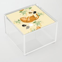 Sleeping cats family Acrylic Box