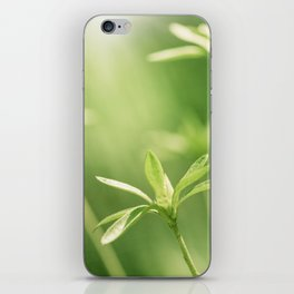 Green Nature Photography, Green Leaves Botanical Art Photo, Colorful Modern Print iPhone Skin