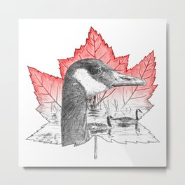 Canada Goose on Maple Leaf (with some red) Metal Print