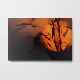 Country Sunrise 03 Metal Print