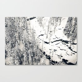 Snow on Textures of Pine Trees and Cliffs Canvas Print