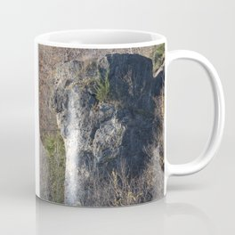 Indian Head Rock, Savanna IL Coffee Mug