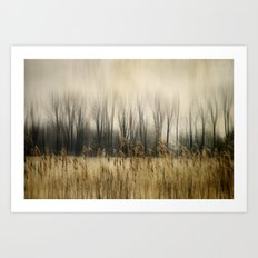Marsh Edge Art Print
