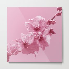 Pink Mallow Flowers Photo to Paint in Pink Metal Print