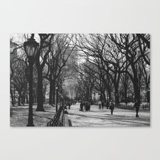 Oh, Central Park Canvas Print