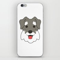schnauzer iPhone & iPod Skins featuring Miniature Schnauzer by Sugar and Spice Menagerie