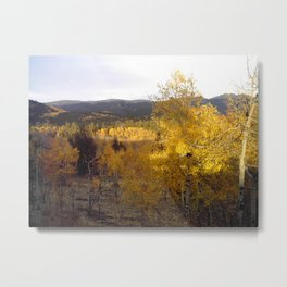 Evening Shadows on a Golden Mountainside Metal Print