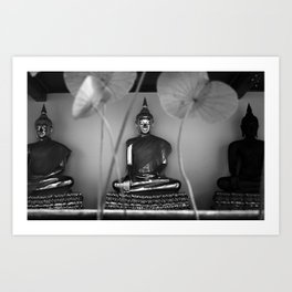 Buddhas Art Print