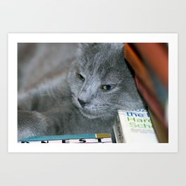 Hodge Lounges Art Print