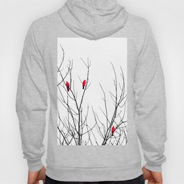 Artistic Bright Red Birds on Tree Branches Hoody