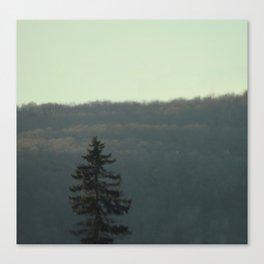 Evergreen Dream Canvas Print