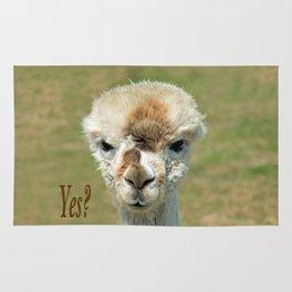 YES? Rug