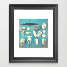 Beachcomber's collection Framed Art Print