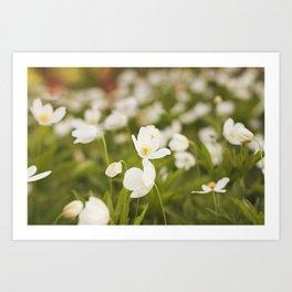 Tiny Flower Art Print