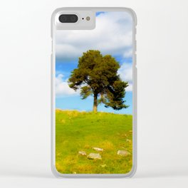 On A Summer's Day Clear iPhone Case
