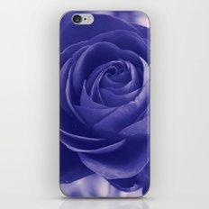 Romantic rose(purple). iPhone & iPod Skin