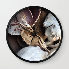 Crabe &Coquillages Wall Clock