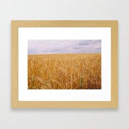 York Framed Art Print