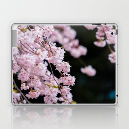 Japanese Cherry Blossoms Laptop & iPad Skin