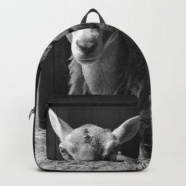 We Are Expecting Visitors Soon Backpack