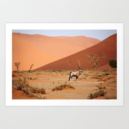 NAMIBIA ... Sossusvlei Oryx II Art Print