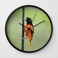 baltimore Wall Clocks featuring Baltimore Oriole by Tammy Franck