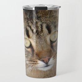 Cute Tabby Cat Portrait  Travel Mug