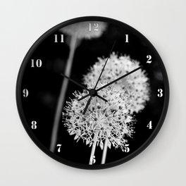 Allium cristophii Wall Clock