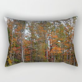 Colorful Cuyahoga Valley Rectangular Pillow