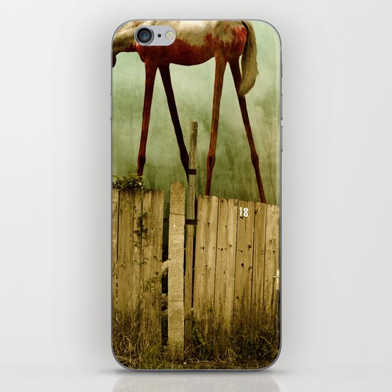 The Painted Horse iPhone & iPod Skin