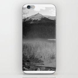Cabin Lake iPhone Skin