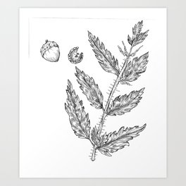 Nettles and Nutshells Art Print