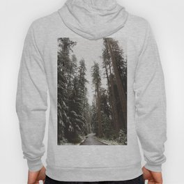 Redwood Forest Adventure II - Nature Photography Hoody