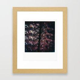 I Caught You Framed Art Print