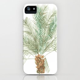 Jericho Palm iPhone Case