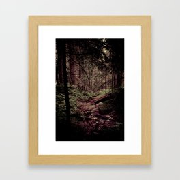 Ancient Woods Framed Art Print
