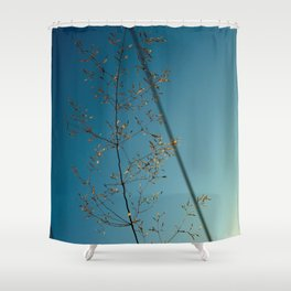 flower photography by Dan Musat Shower Curtain