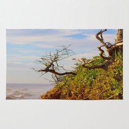 HDR Sandy Cliffs Rug