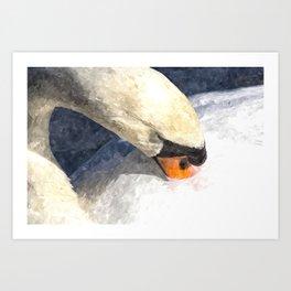 Swan Watercolour Art Art Print