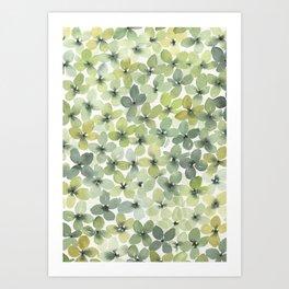 green hydranges Art Print