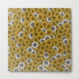 Dandelions pattern Metal Print