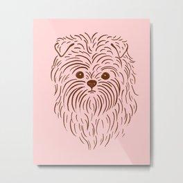 Affenpinscher (Pink and Brown) Metal Print