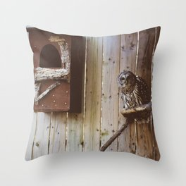 Curious Owl (Montreal, Canada) Throw Pillow