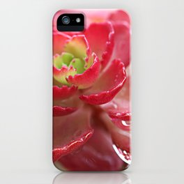 Succulent Flower iPhone Case