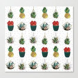 Festive Succulents Canvas Print