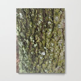 Green Bark Metal Print