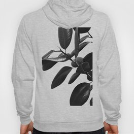 Ficus Elastica Black & White Vibes #1 #foliage #decor #art #society6 Hoody