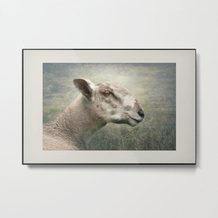 A portrait of Ewe.... Metal Print